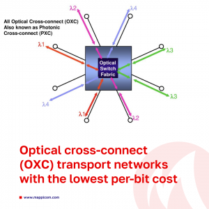 Optical cross-connect (OXC) transport networks with the lowest per-bit cost