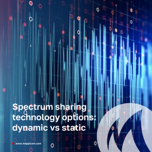 Spectrum sharing technology options: dynamic vs static